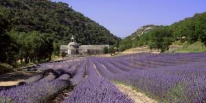 Vacances atypiques : Abbaye Sénanque